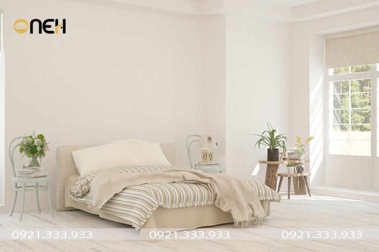 Cây trồng trong phủ ngủ - Thiết kế tạo được điểm nhấn cho căn phòng